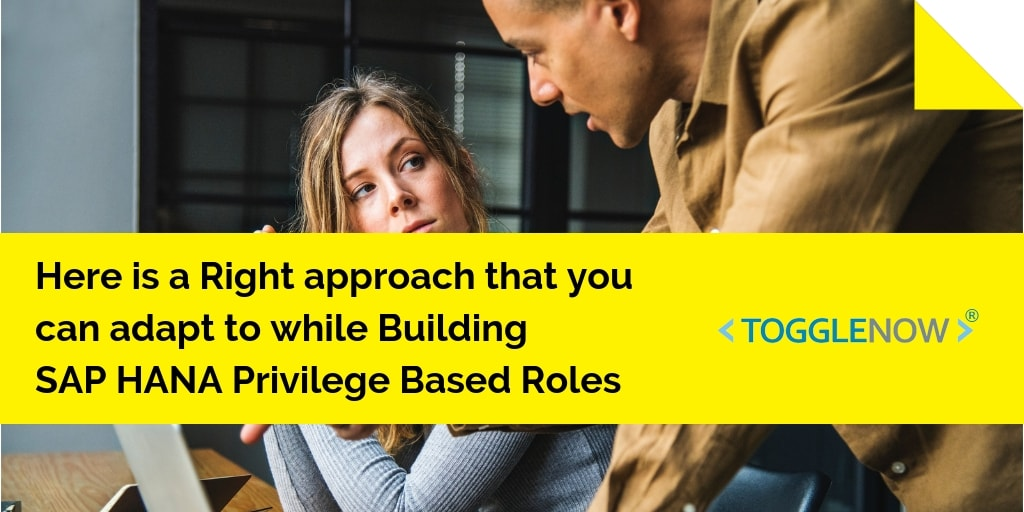 A Right Approach for Building SAP HANA Privilege Based Roles